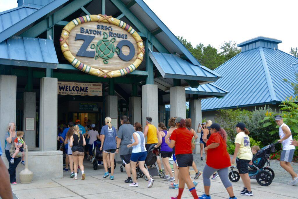 Run Like a Cheetah to the 16th Annual Zoo Run Run