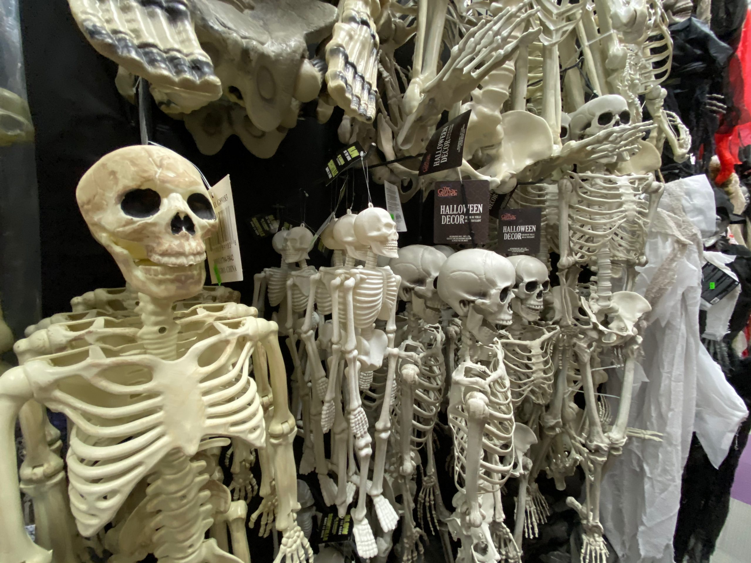 Halloween Decor in Baton Rouge