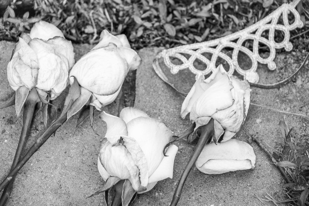 roses on the ground